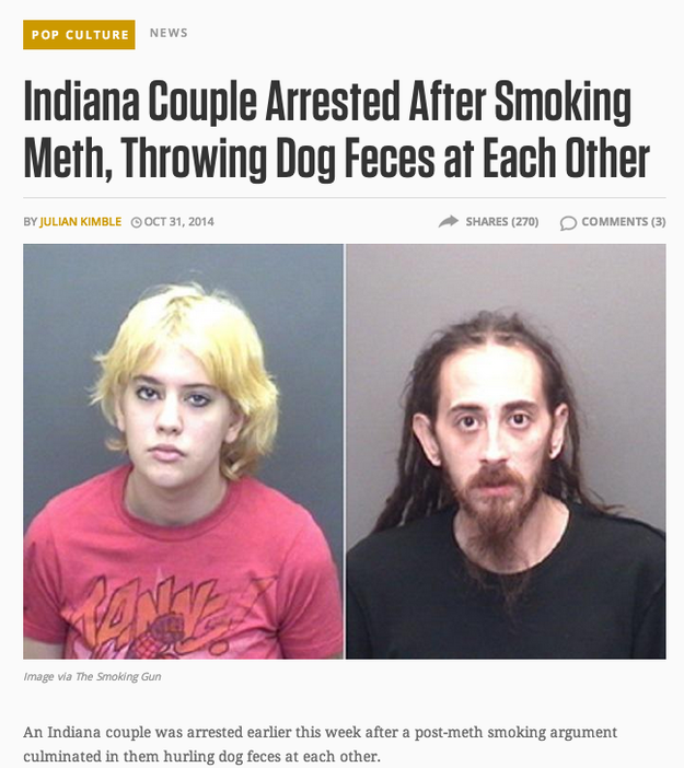 dogFeces